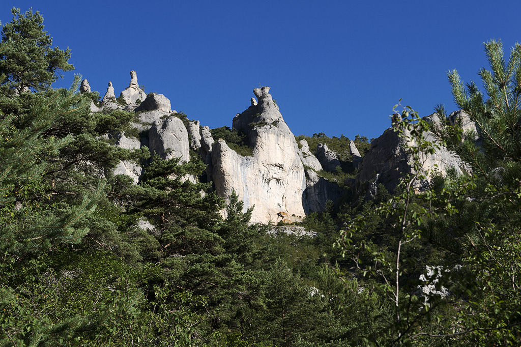 Saint-Marcelin-Gorges-du-Tarn-2