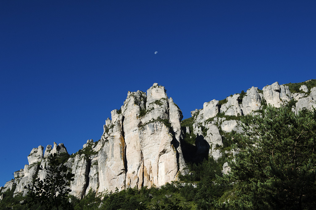 Saint-Marcelin-Gorges-du-Tarn-6