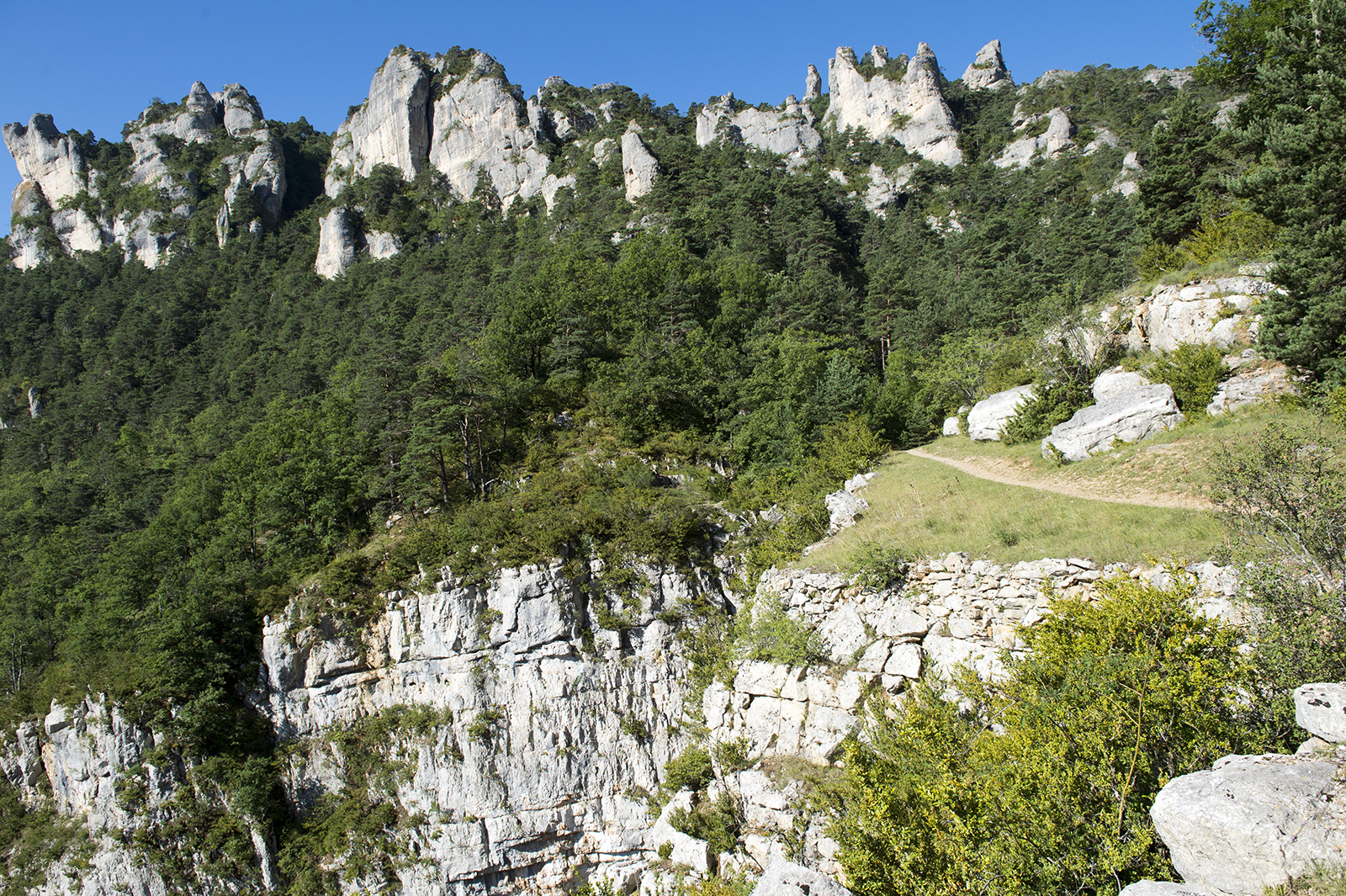 Saint-Marcelin-Gorges-du-Tarn-Couverture