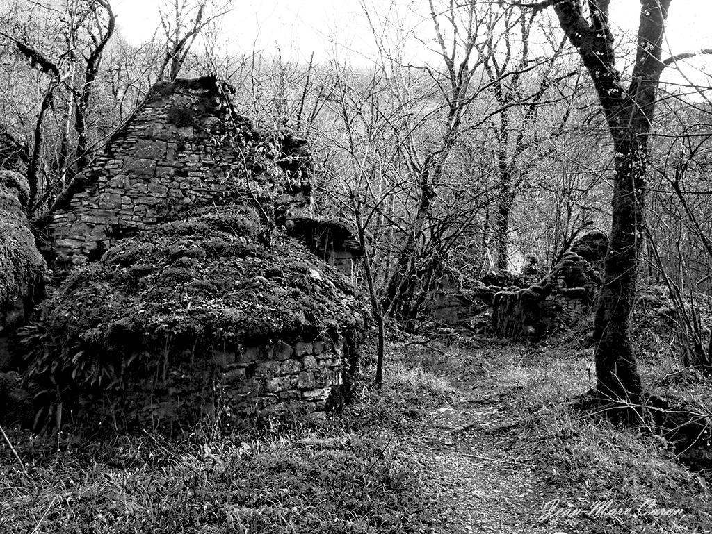 Gorges de l'Alzou - Moulin du Saut (5)